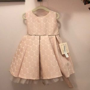 Special Occasion Dress 18 months